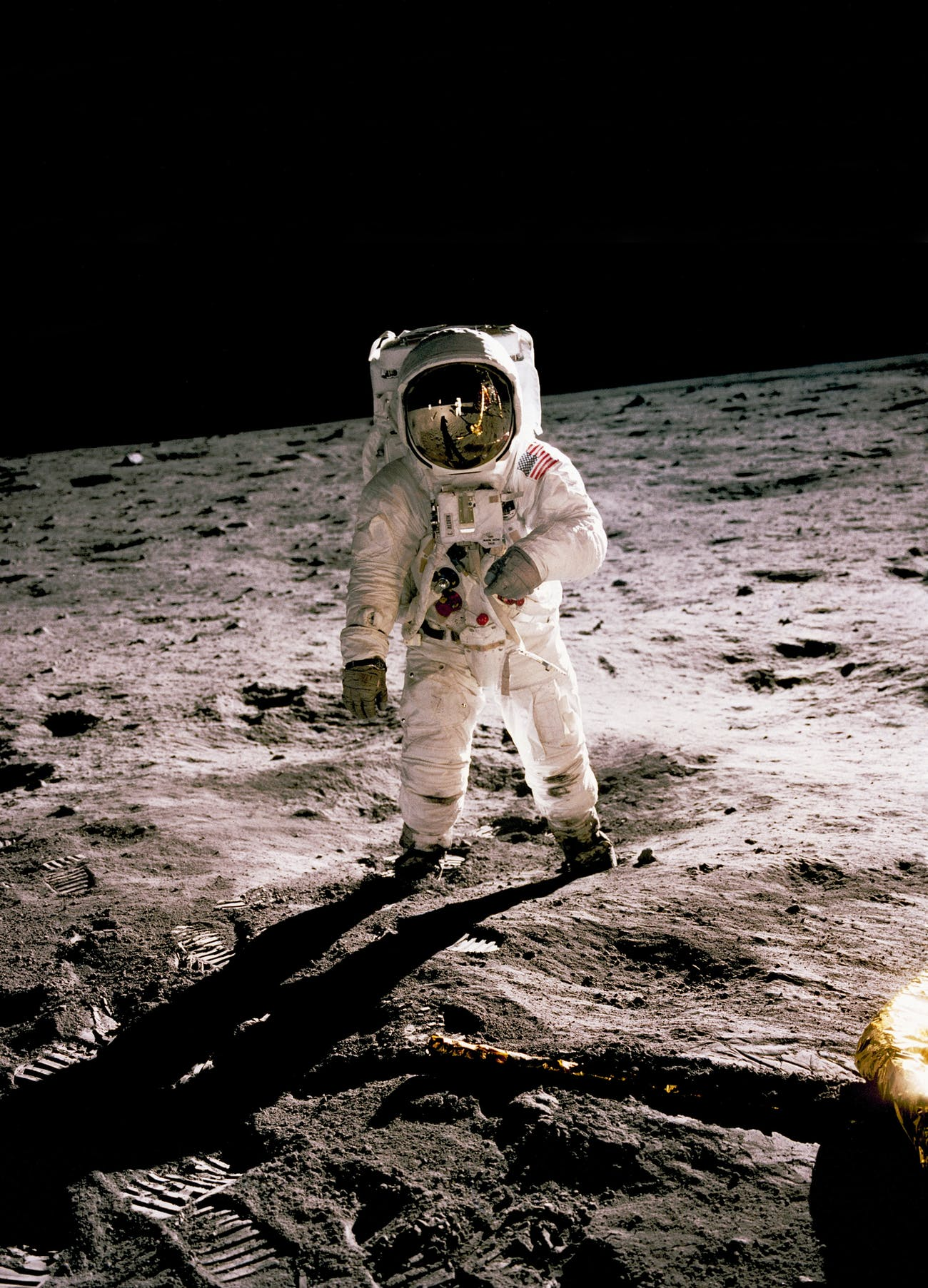 The Apollo A7L on the moon.