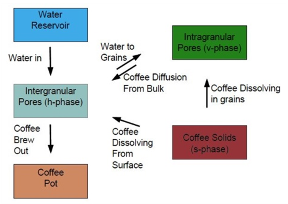 A diagram of the transfers of water and coffee in the extraction model.