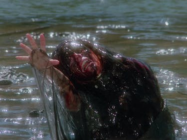 A still from the 'Creep Show', based on Stephen King's short story, 'The Raft'