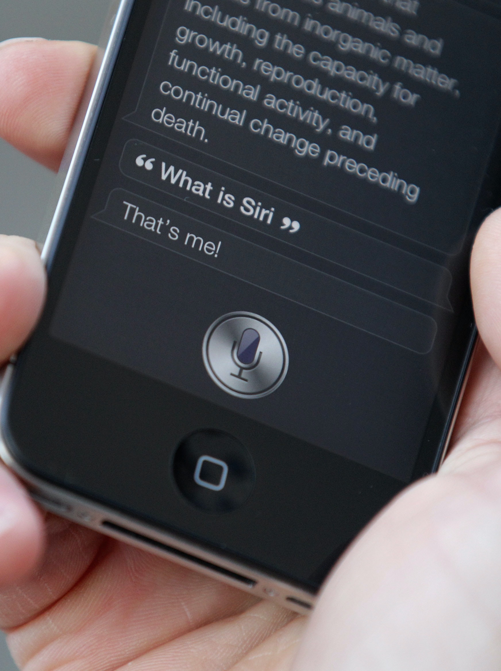 does iphone 4 have siri apple s prototyping a siri powered echo 16872