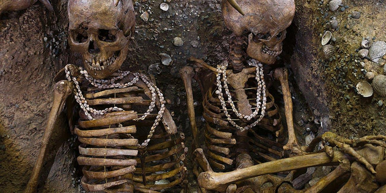 Ancient human news