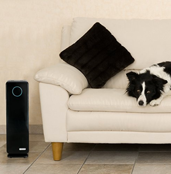 The 5 Best Air Purifiers for Your Home