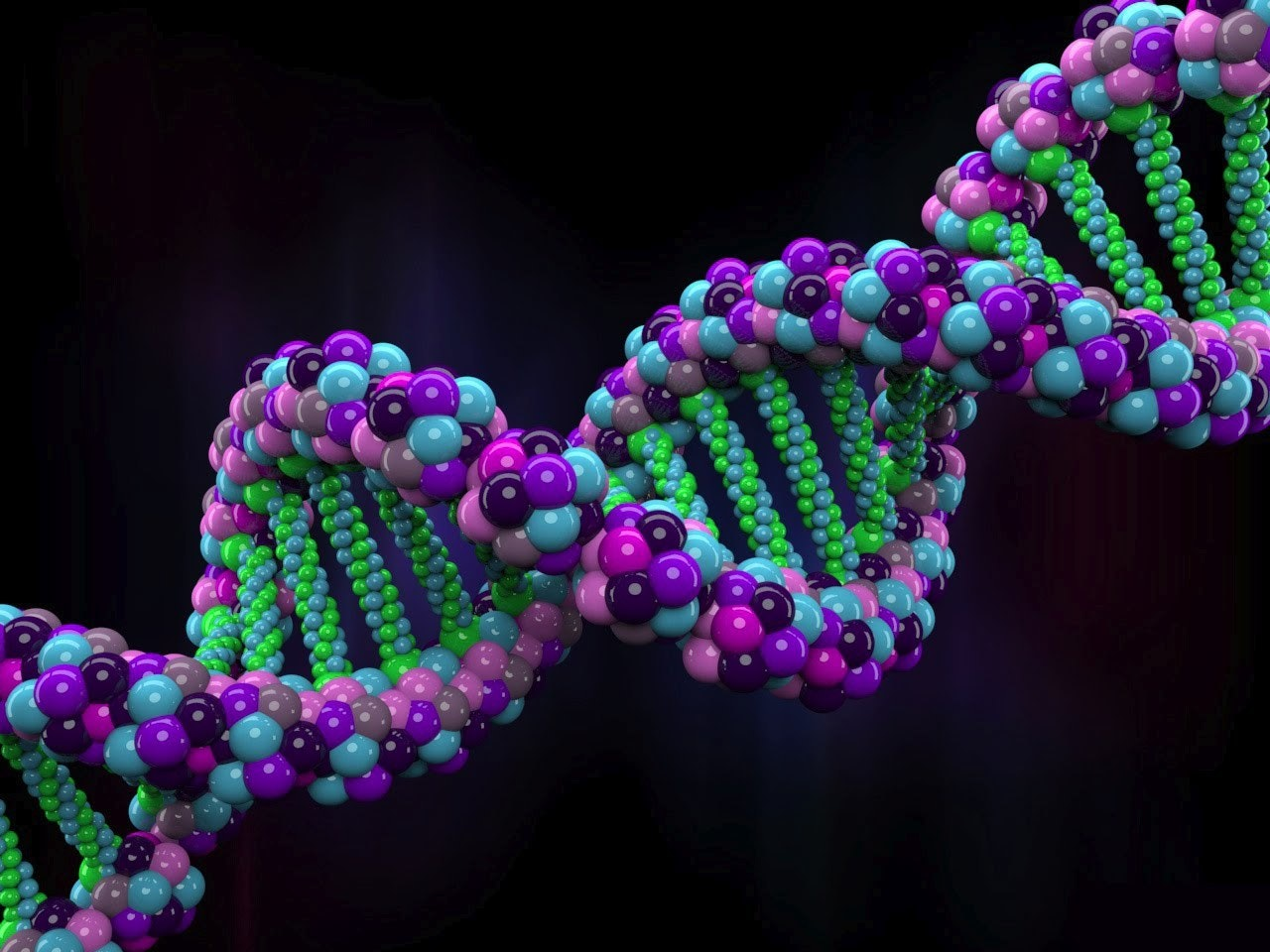 New Plan to Synthesize the Human Genome Emphasizes Transparency, Known Unknowns