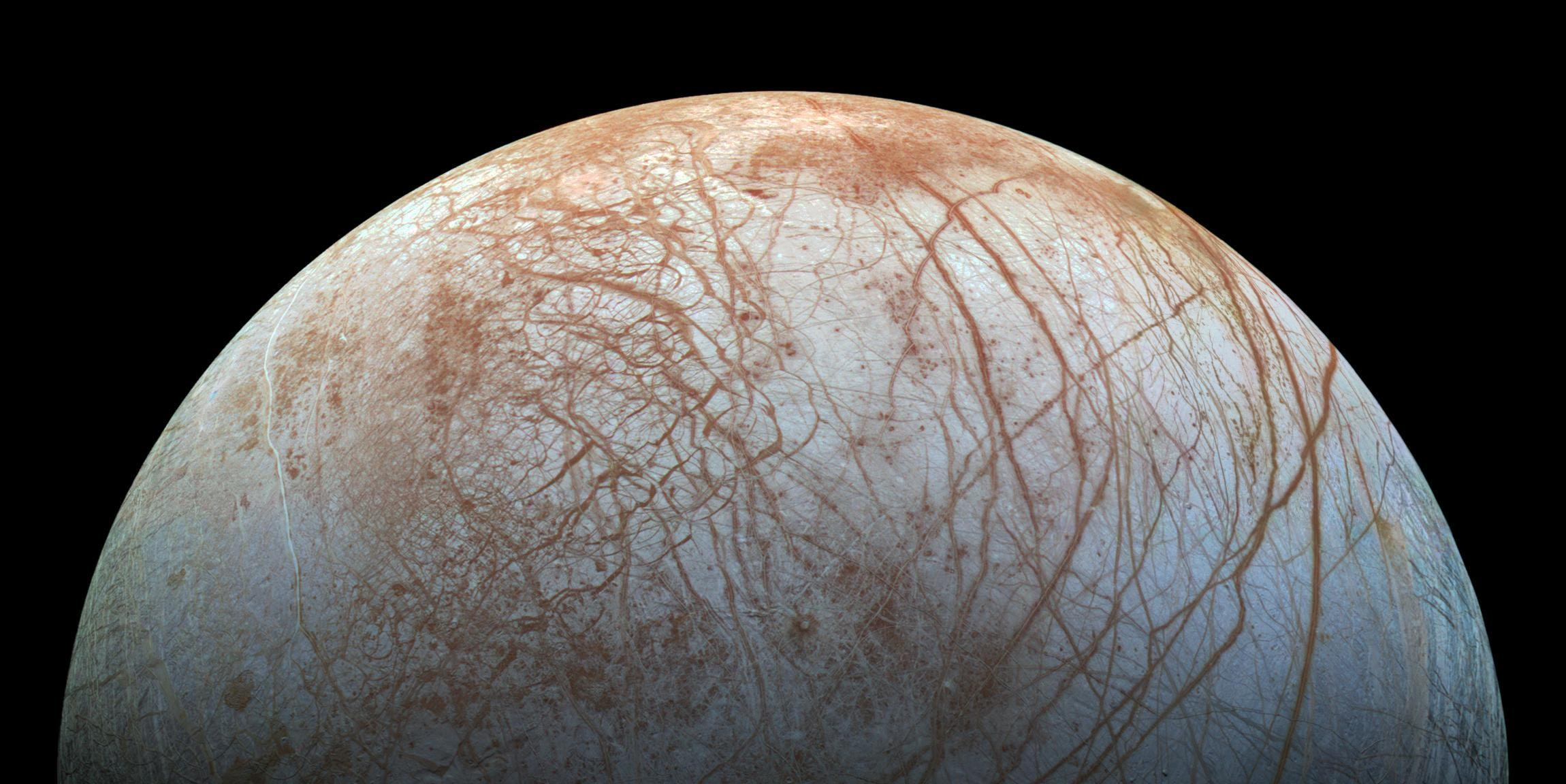 Will NASA Announce the Discovery of Life on Europa Next Week?