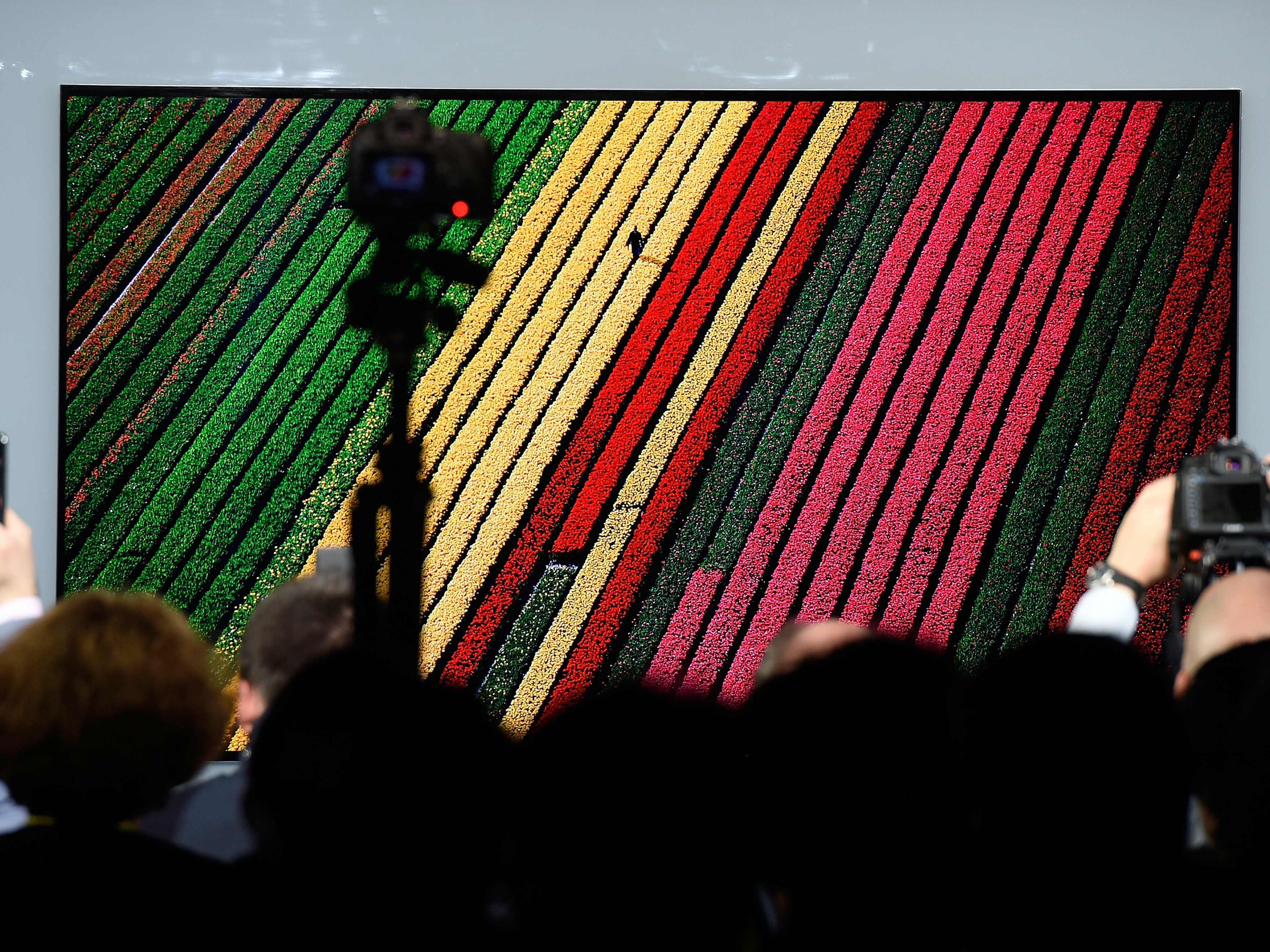 LAS VEGAS, NV - JANUARY 04:  Members of the media photograph the LG Signature OLED TV W during a LG press event for CES 2017 at the Mandalay Bay Convention Center on January 4, 2017 in Las Vegas, Nevada. CES, the world's largest annual consumer technology trade show, runs from January 5-8 and is expected to feature 3,800 exhibitors showing off their latest products and services to more than 165,000 attendees.  (Photo by David Becker/Getty Images)