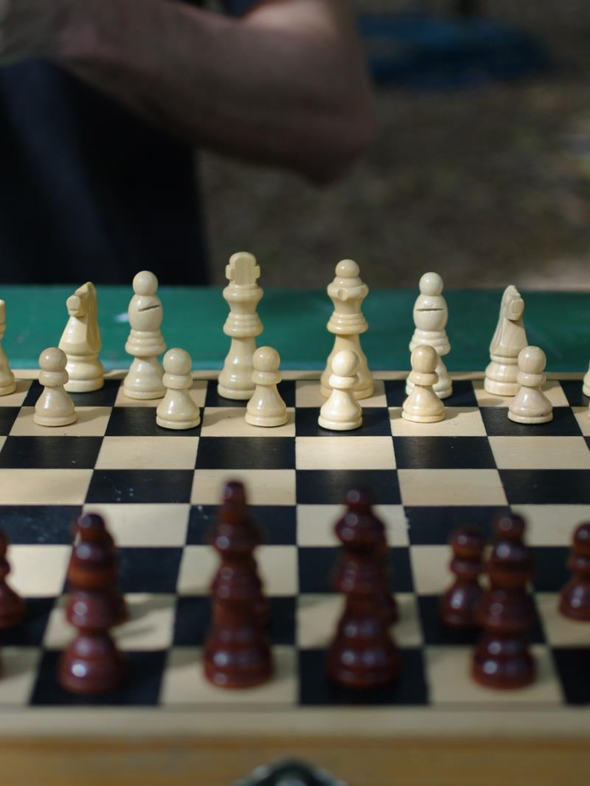 Chess in the park 1