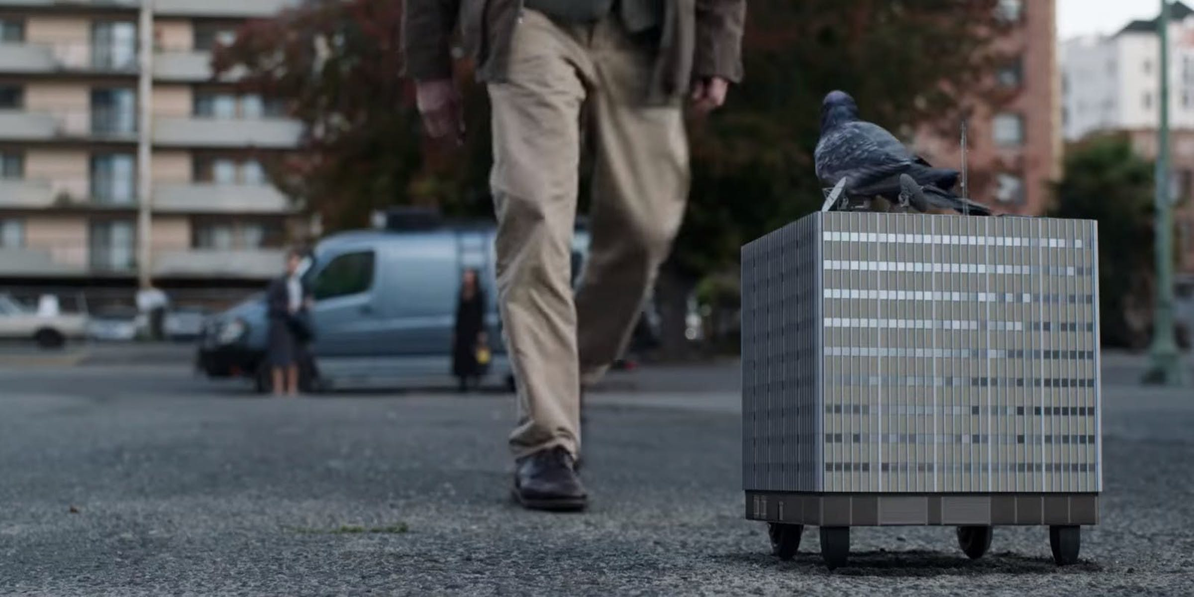 'Ant-Man and the Wasp' Pigeon