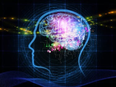 brain digital head profile mind memory numbers