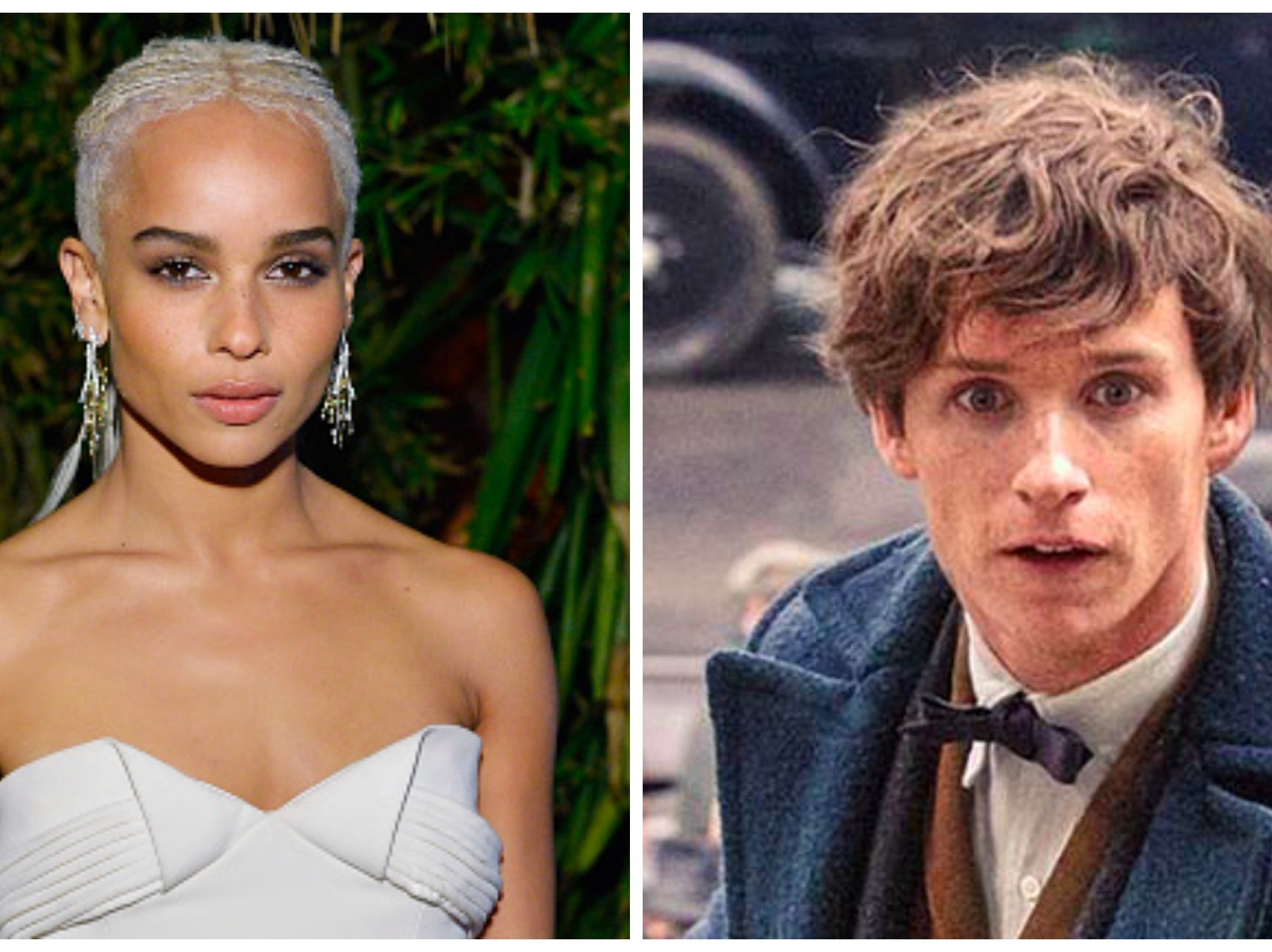 Eddie Redmayne as Newt Scamander in 'Fantastic Beasts and Where to Find Them'