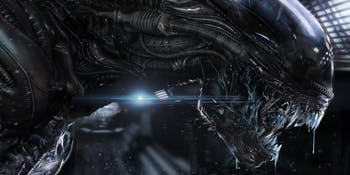 A xenomorph as it appears in 'Alien: Covenant.'