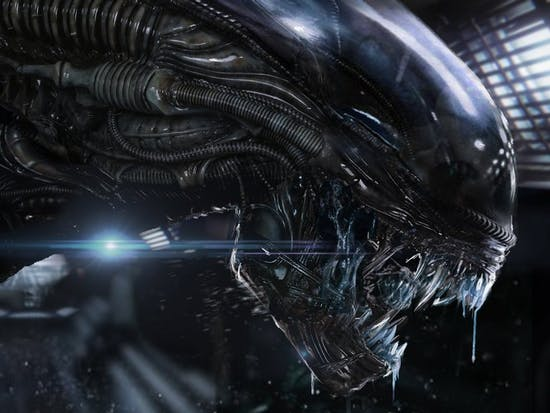 'Alien' Xenomorph Biology, Explained