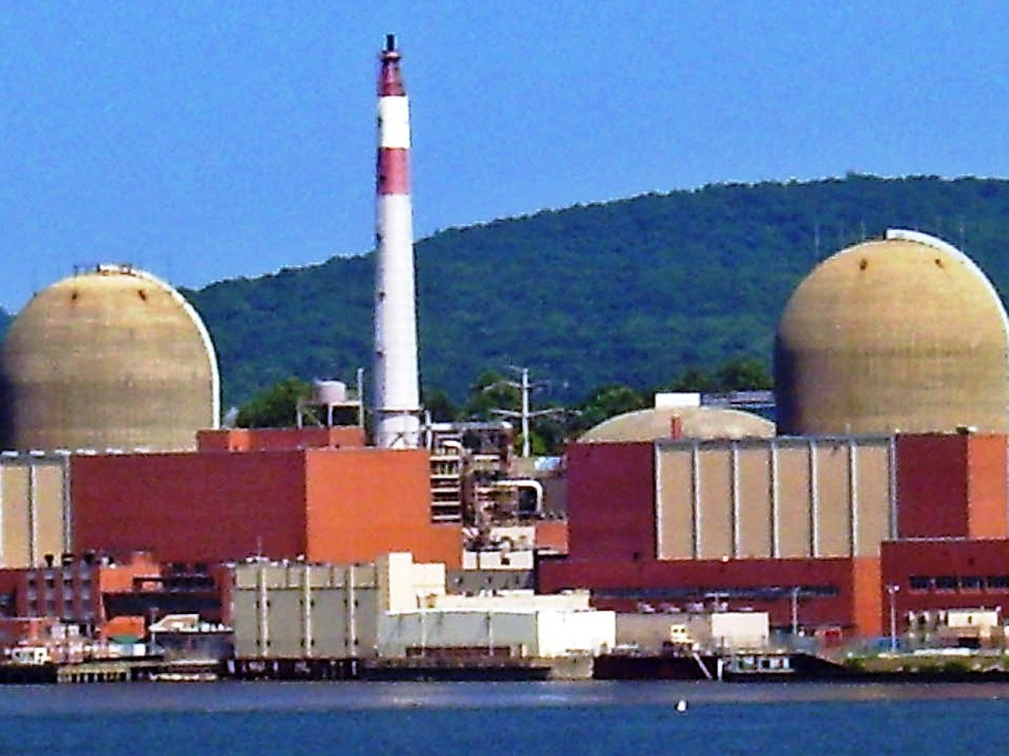 long streams of excrement from birds shut down ny nuclear power plant