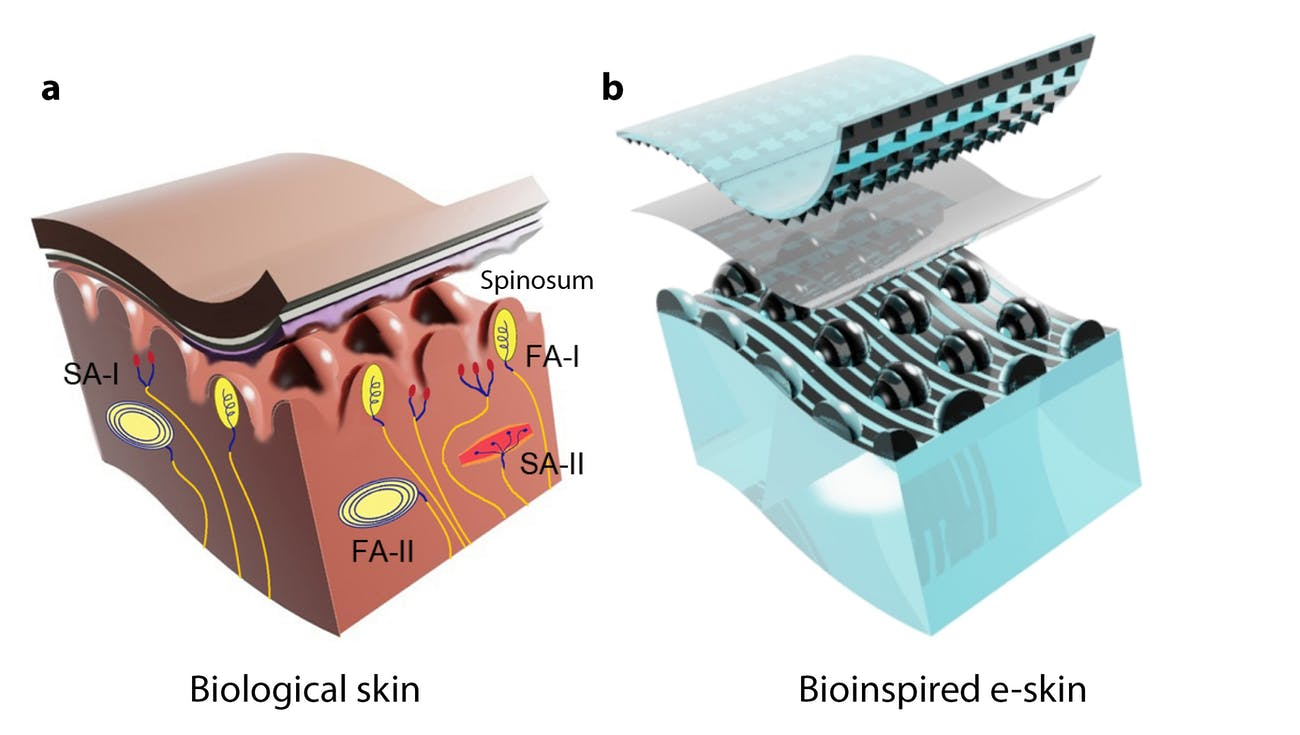 electronic skin robotic touch