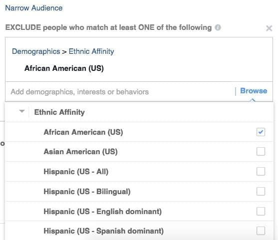 This is what the Ethnic Affinity options look like.