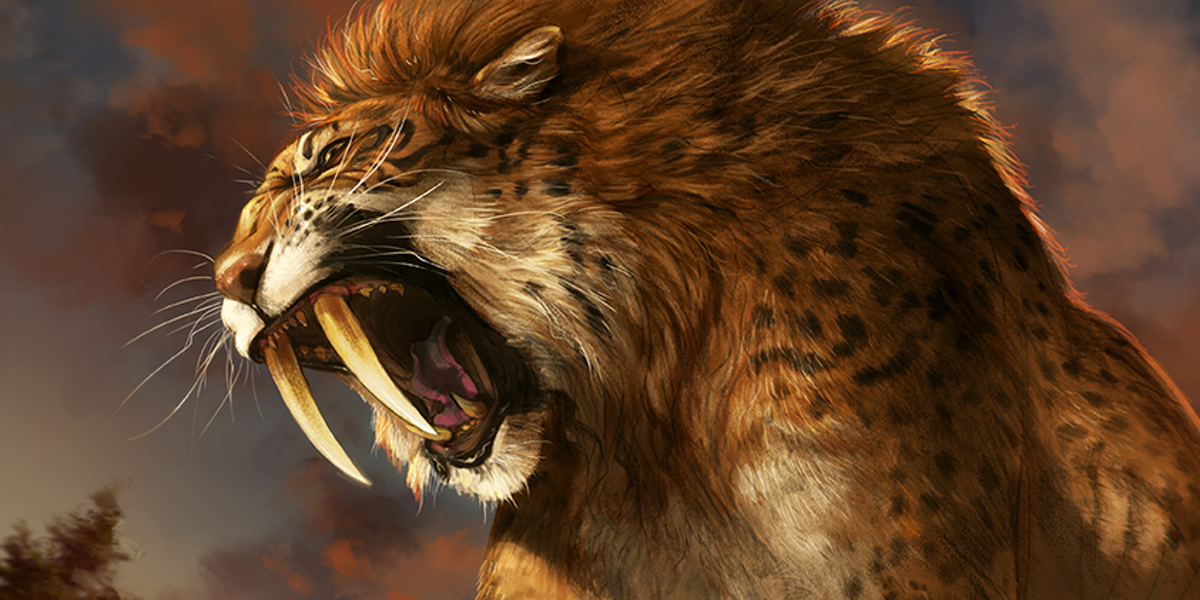 Ancient DNA Connects Saber-Toothed Tigers and House Cats ...