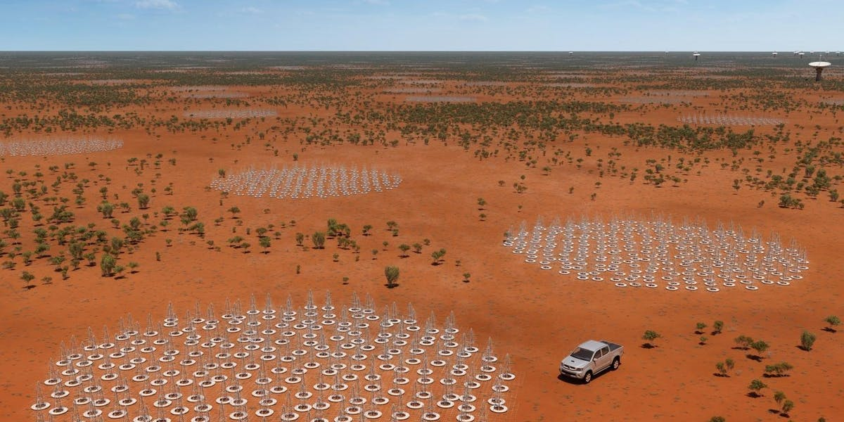 Artist's impression of the low frequency antennas to be built in Australia as part of the Square Kilometre Array.