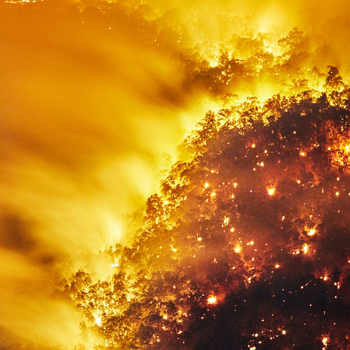 Australia's fires could change global climate patterns for the worse