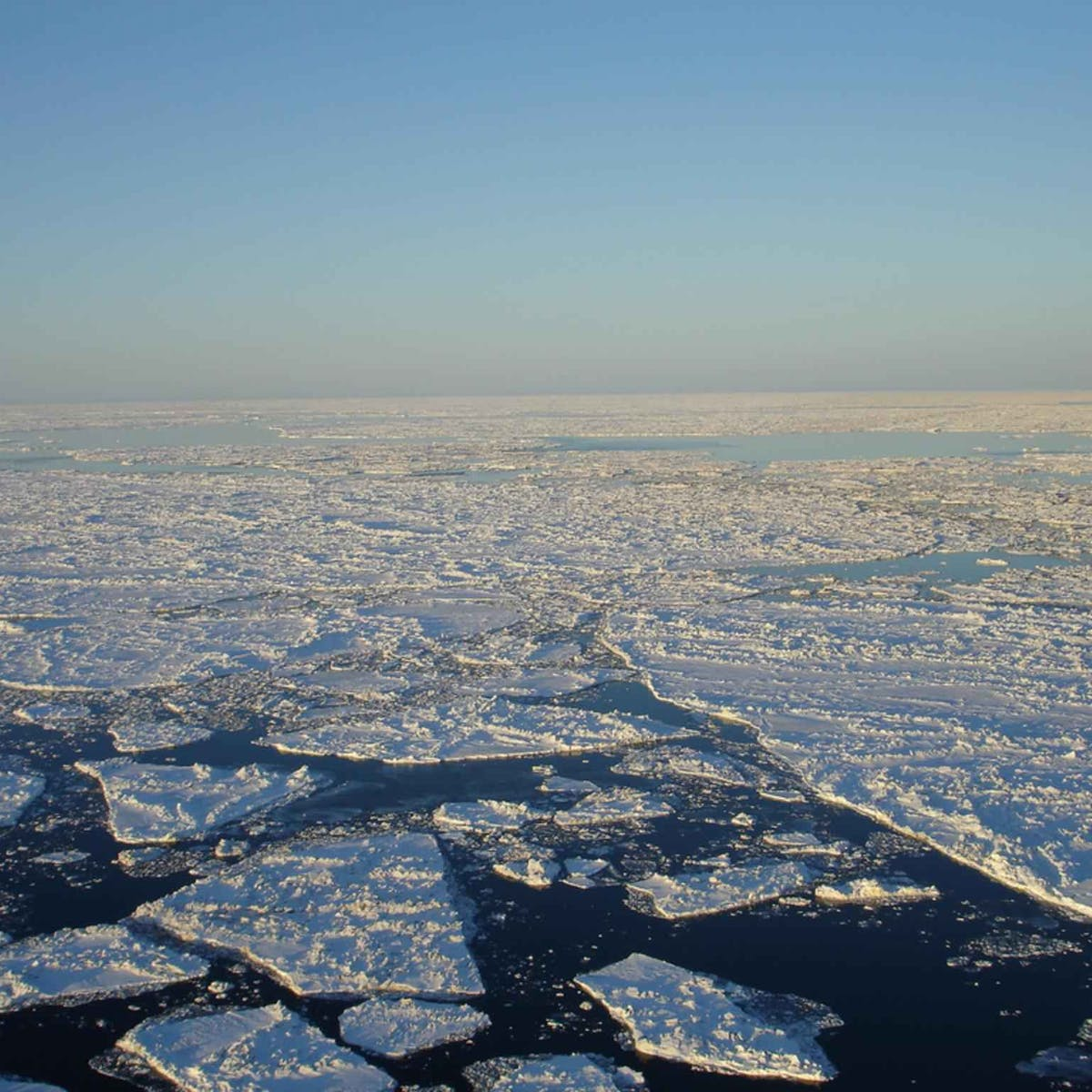 Long-lost landscapes, frozen for 40,000 years, exposed by melting Arctic ice