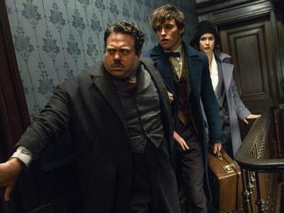 10 Fantastic Beasts and Their Magical Properties