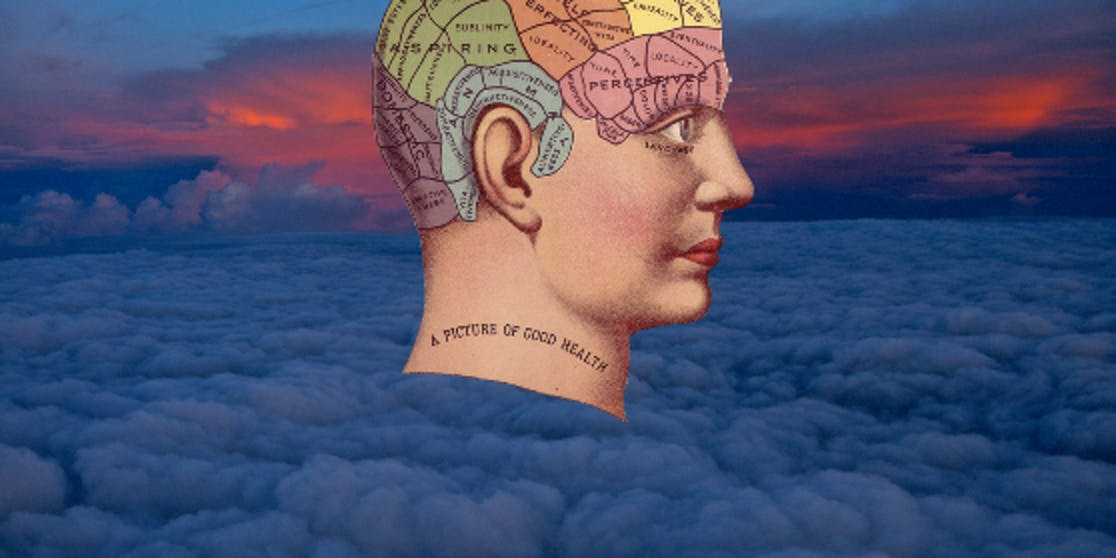 Brain scans reveal when people are dreaming of certain things.