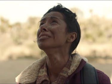 Why 84 Lumber's Immigration Ad Divided the Internet