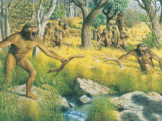 Lucy the Human Ancestor Swung From Trees Like a Chimpanzee