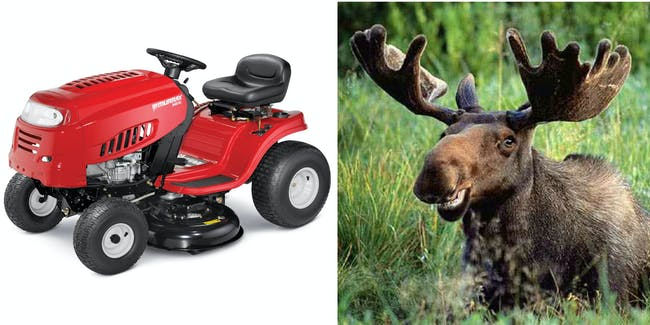moose lawnmower