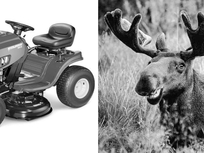 moose lawnmower