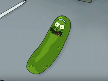 Pickle Rick Reveals Himself in 'Rick and Morty' Season 3 Clip