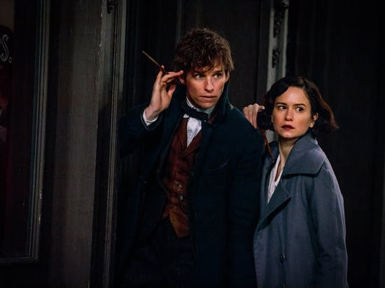 'Harry Potter' Superfans, Now Adults, Tackle 'Fantastic Beasts'