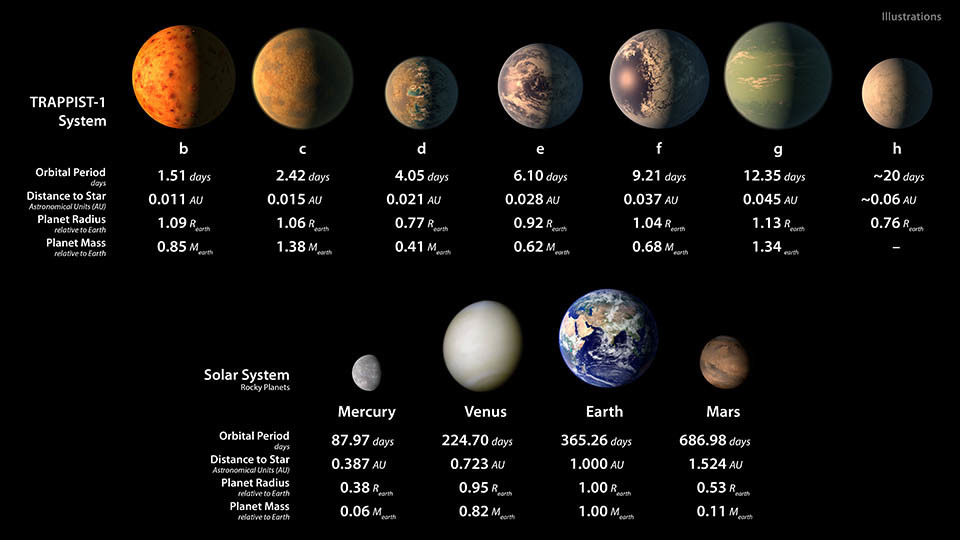 This graphic compares the orbits of planets in the TRAPPIST-1 system and the solar system.