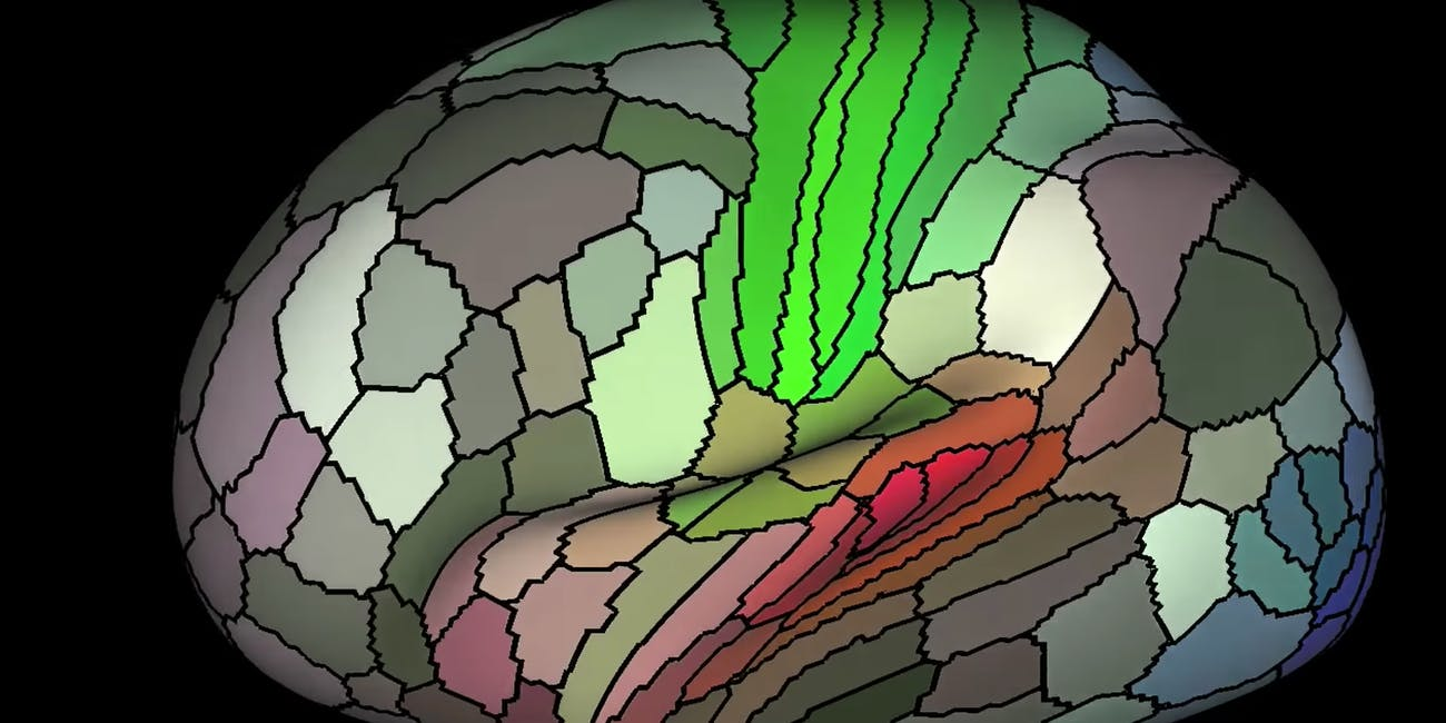 Scientists Just Mapped 97 New Parts Of Your Brain Inverse