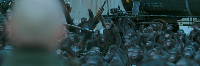 The ape army in 'War for the Planet of the Apes'