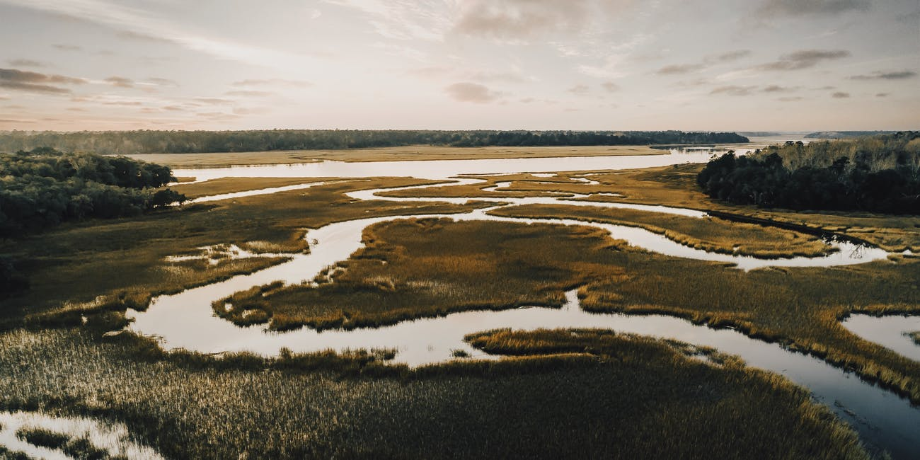 "Marsh Mud Hides a Key Ingredient for ""Anti-Greenhouse Gas"""