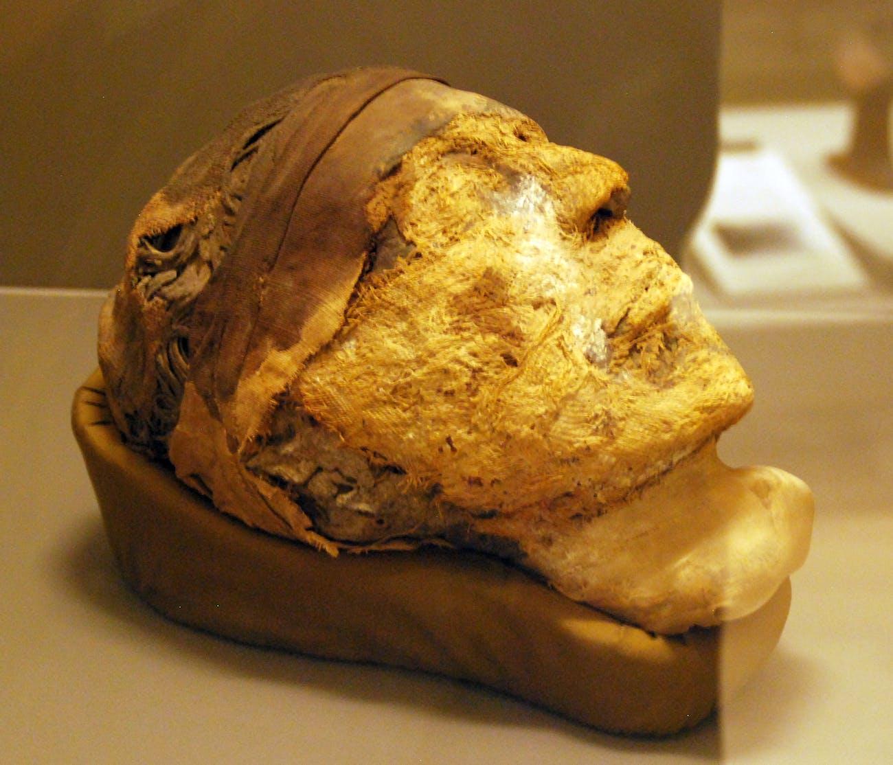 Djehutynakht, Egyptian mummy head