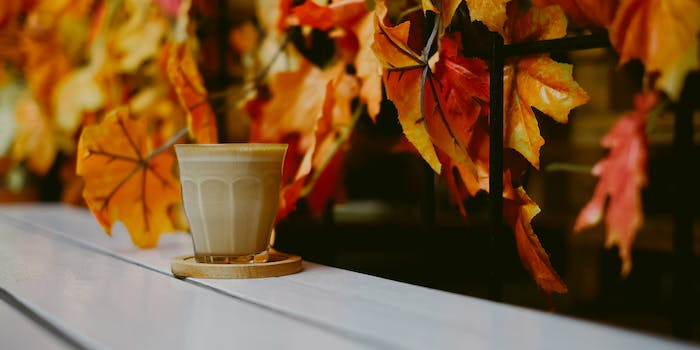 pumpkin spice latte psl obsession