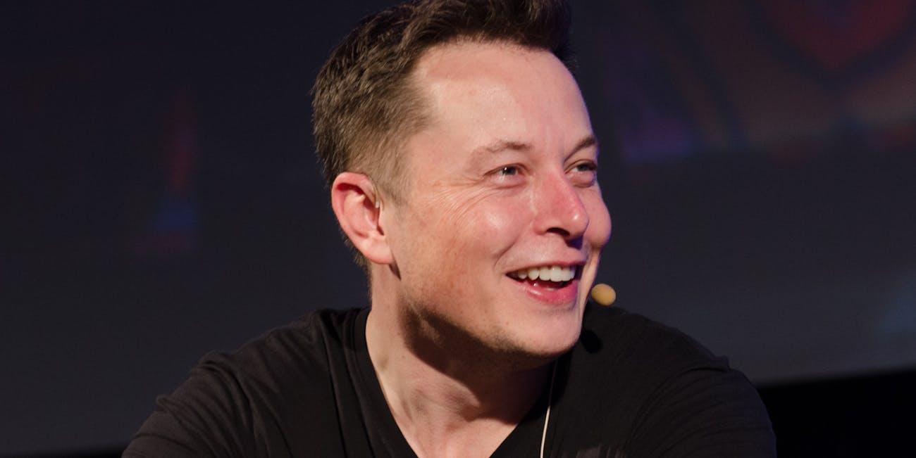 Elon Musk in 2013.