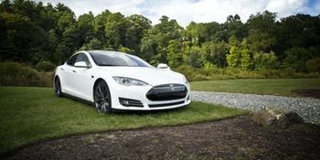 Tesla on green verge.