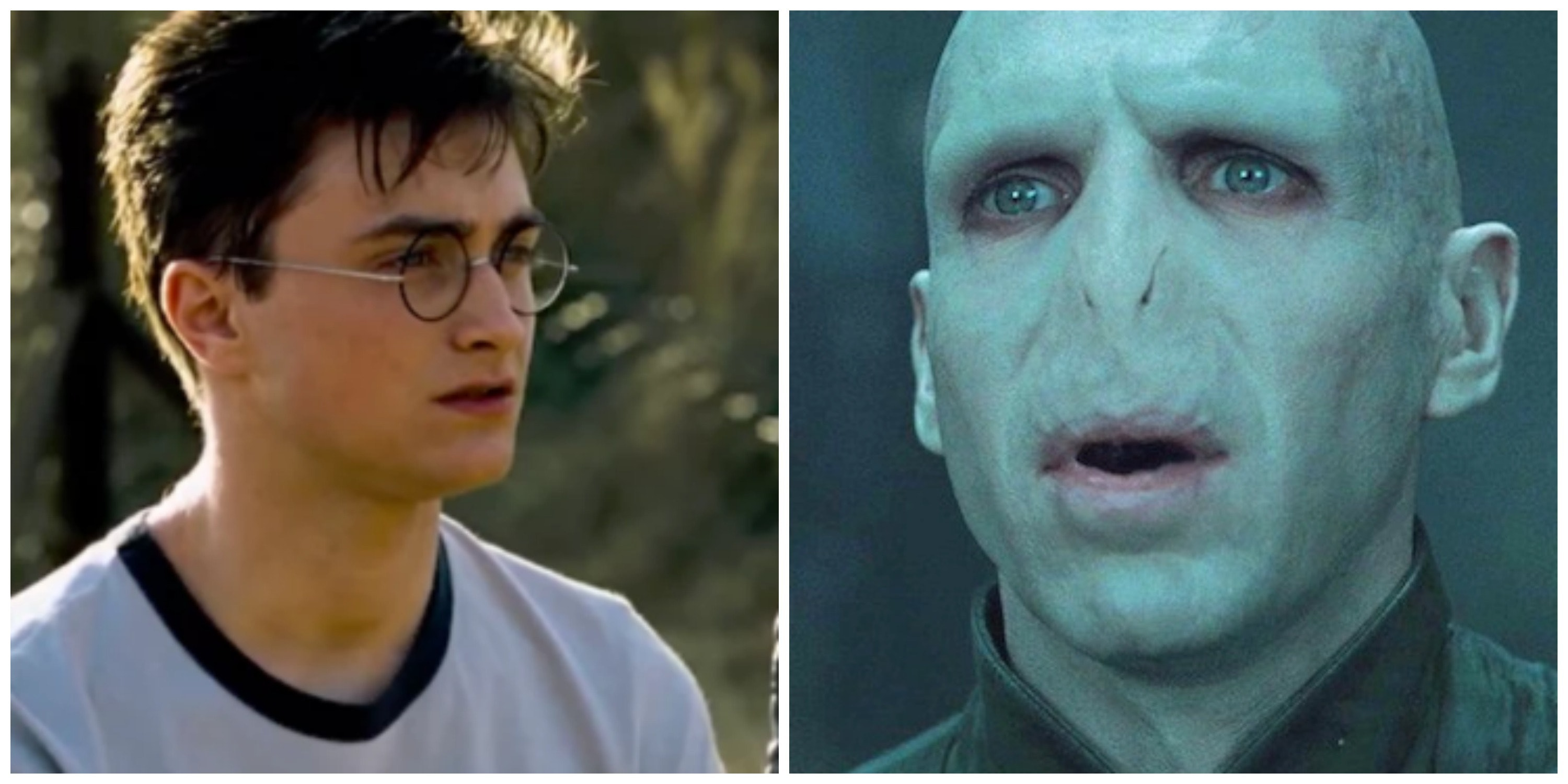 Harry Potter in love with Voldemort