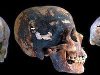skeleton pompeii