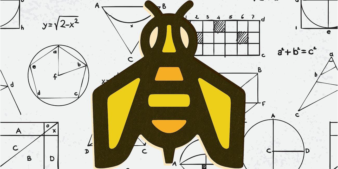bee brains can do math