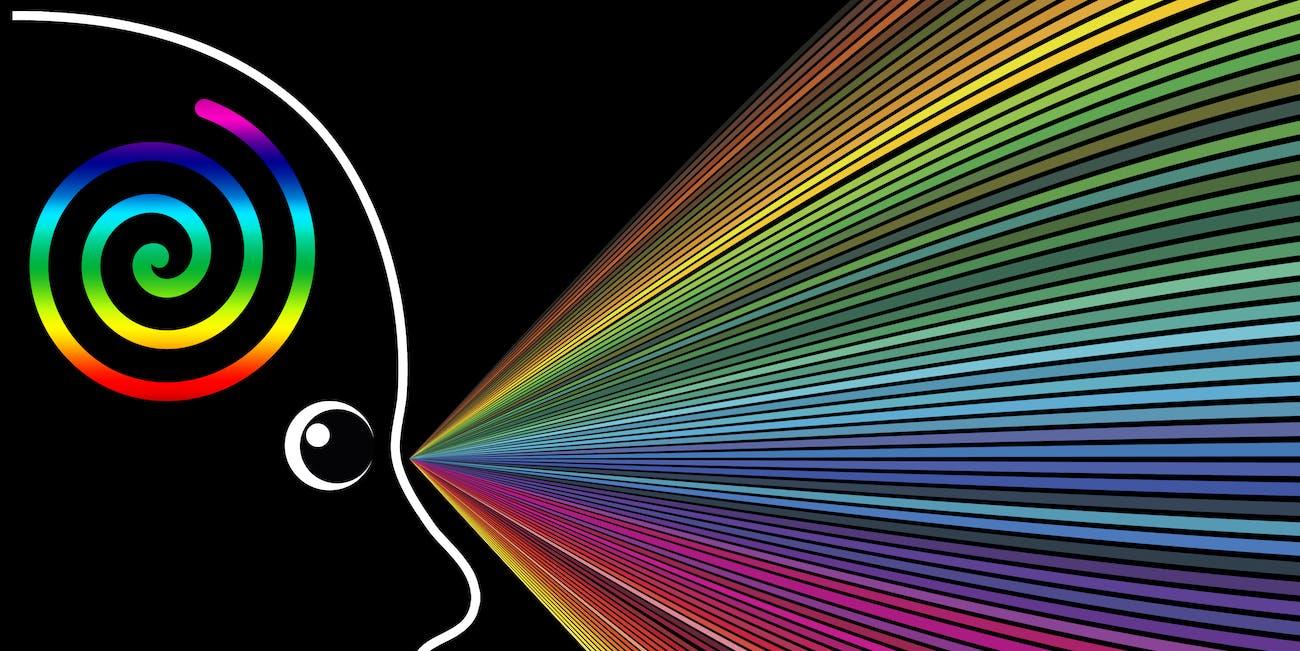 MDMA effects on brain