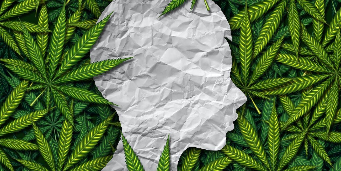 marijuana, health, cannabis