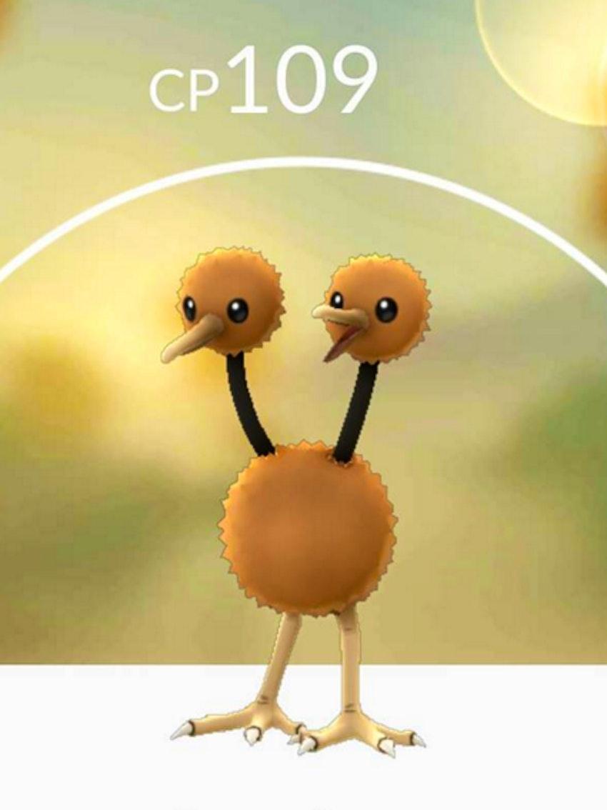 Pokemon Go Doduo Images