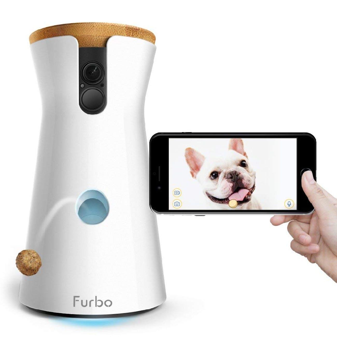 smart home pet, dog camera, dog smart home