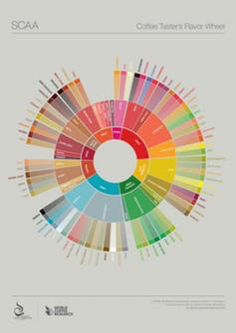 The Coffee Taster's Flavor Wheel provides a way to name various tastes within the beverage.