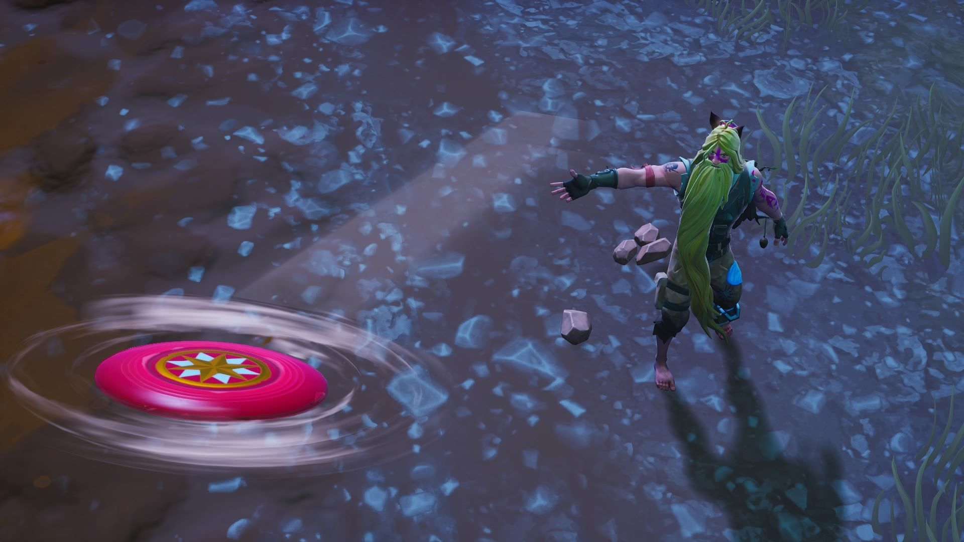 throw the flying disc toy and catch it before it lands