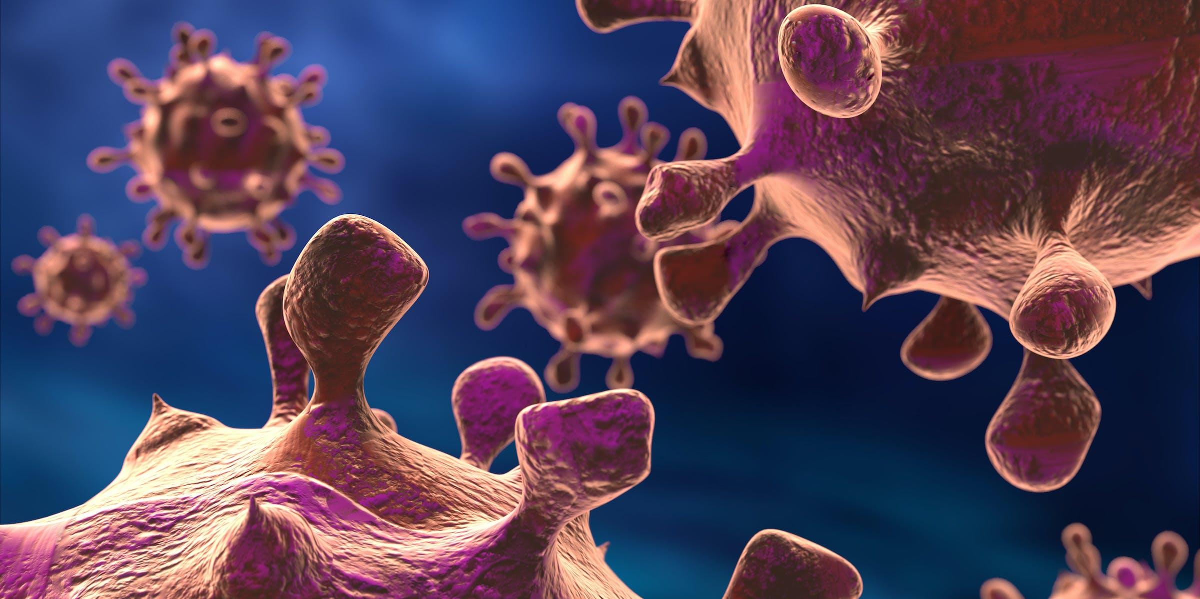 bacteria/viruses