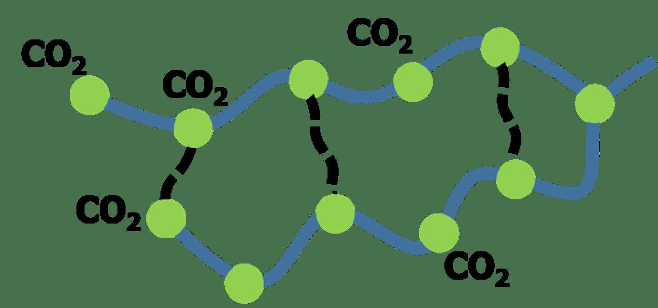 glue molecules