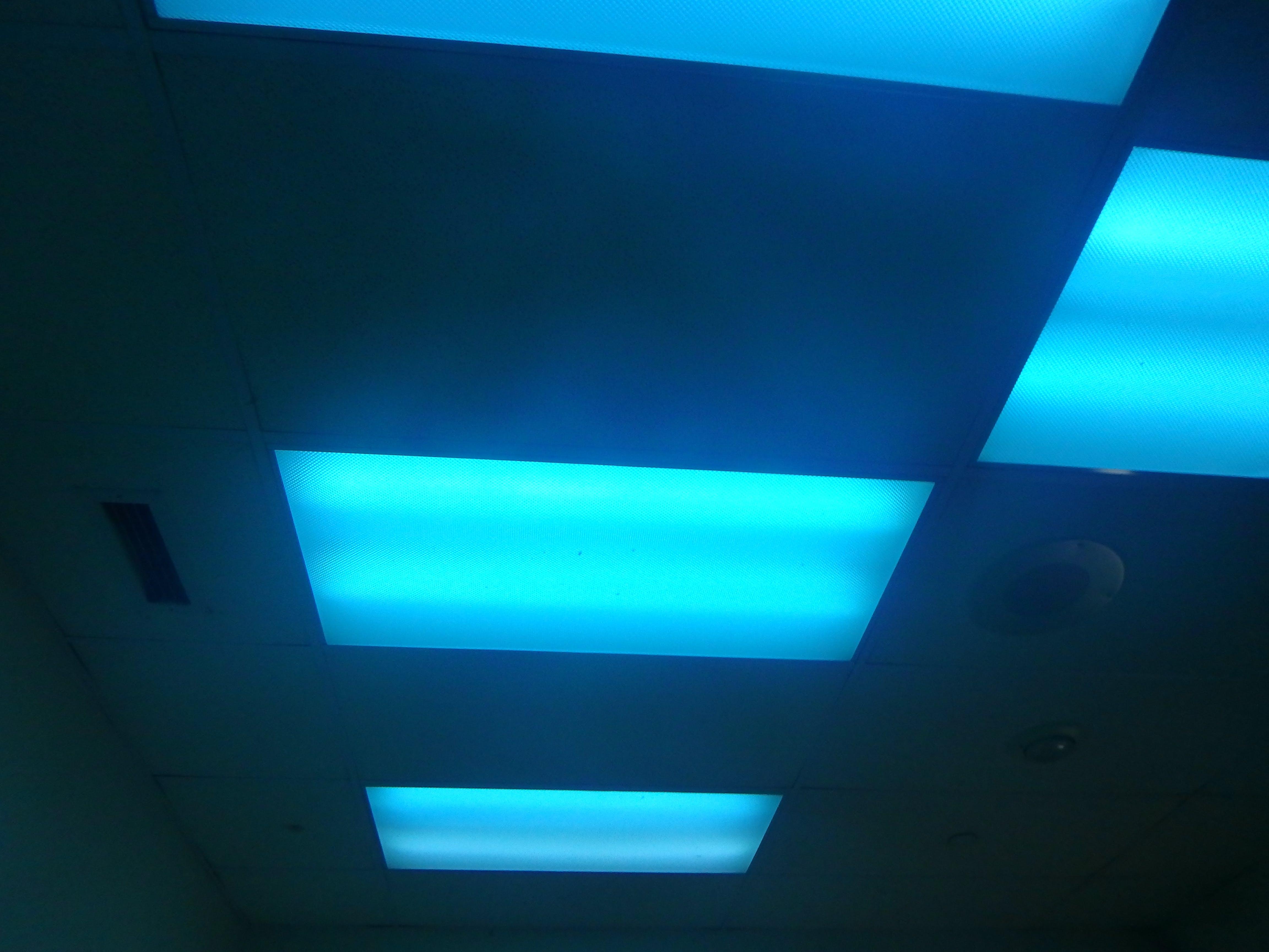 lighting blue lights anaheim endless